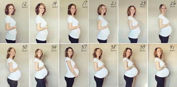 Размер живота при беременности