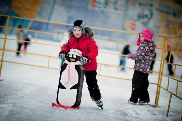 Устойчивость на льду