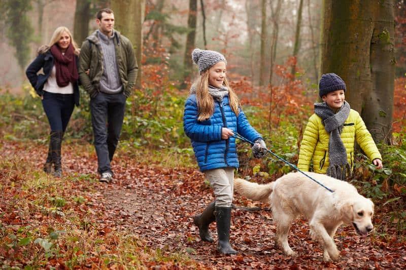 Семейная пара гуляет в лесу